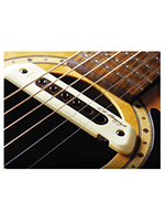 L.r.baggs M80 Magnetic Soundhole Pickup